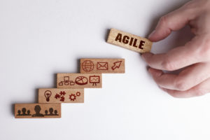Working model of business: Agile